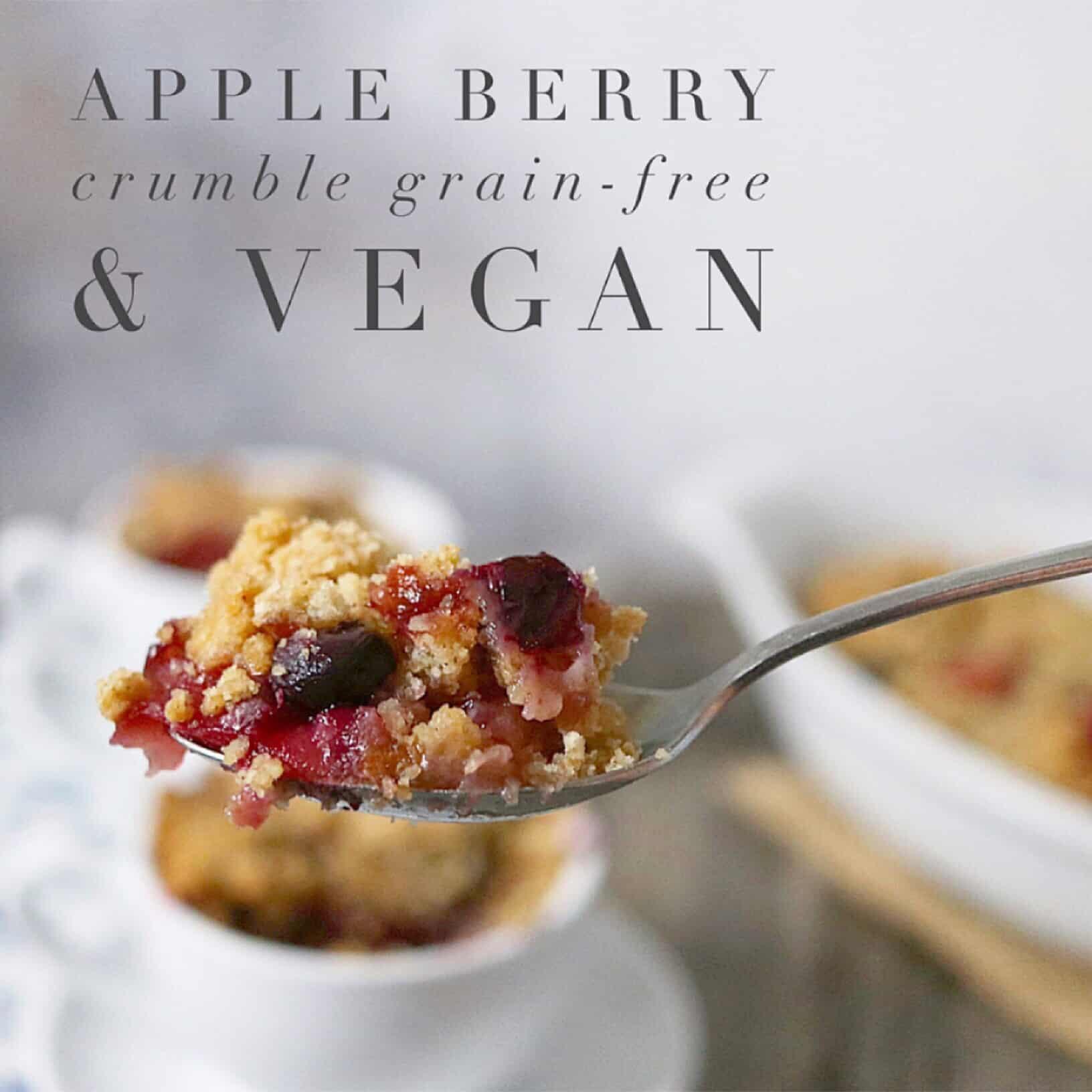 Grain-Free + Vegan Apple Crumble Breakfast Dessert