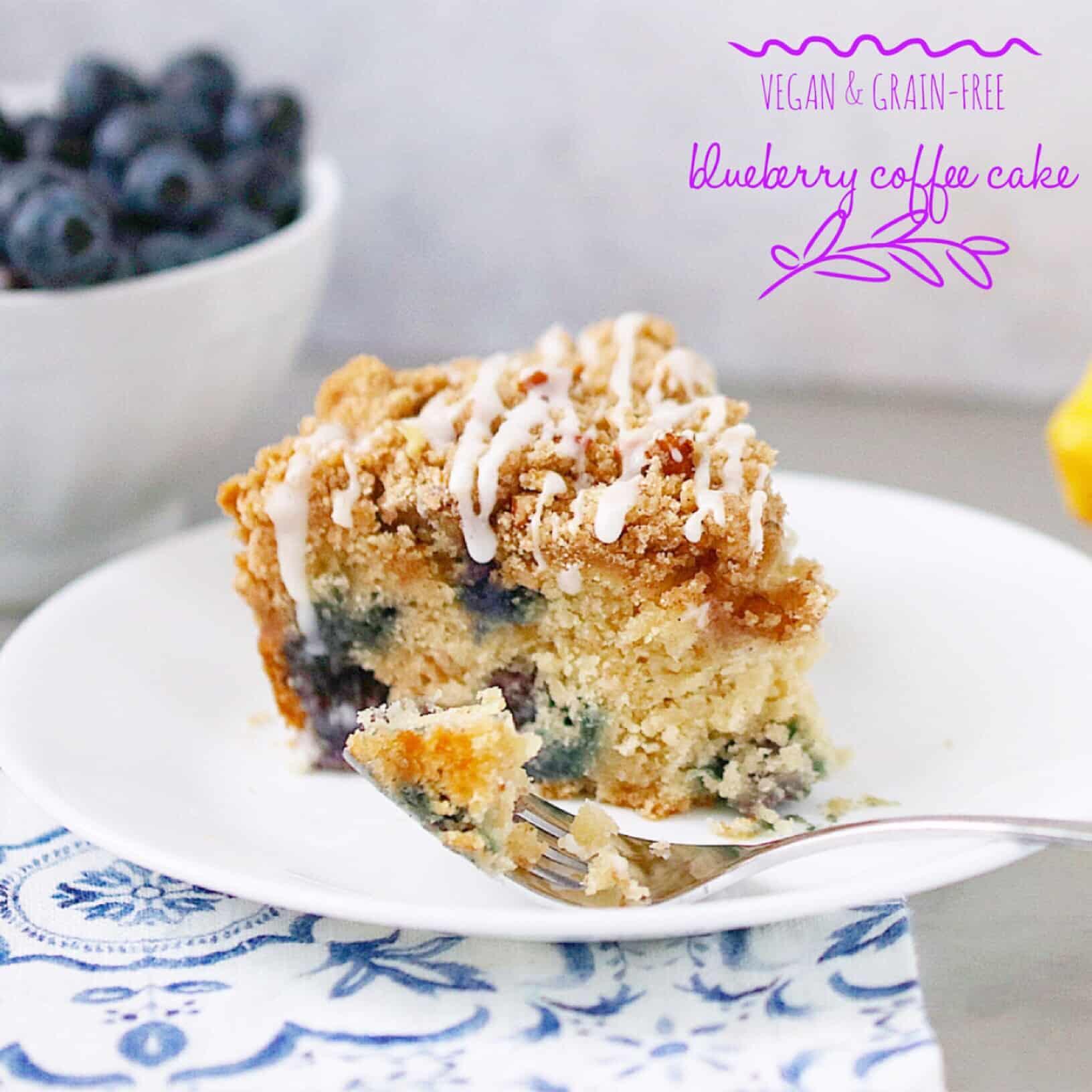 Vegan Blueberry Coffee Cake/Quick Bread