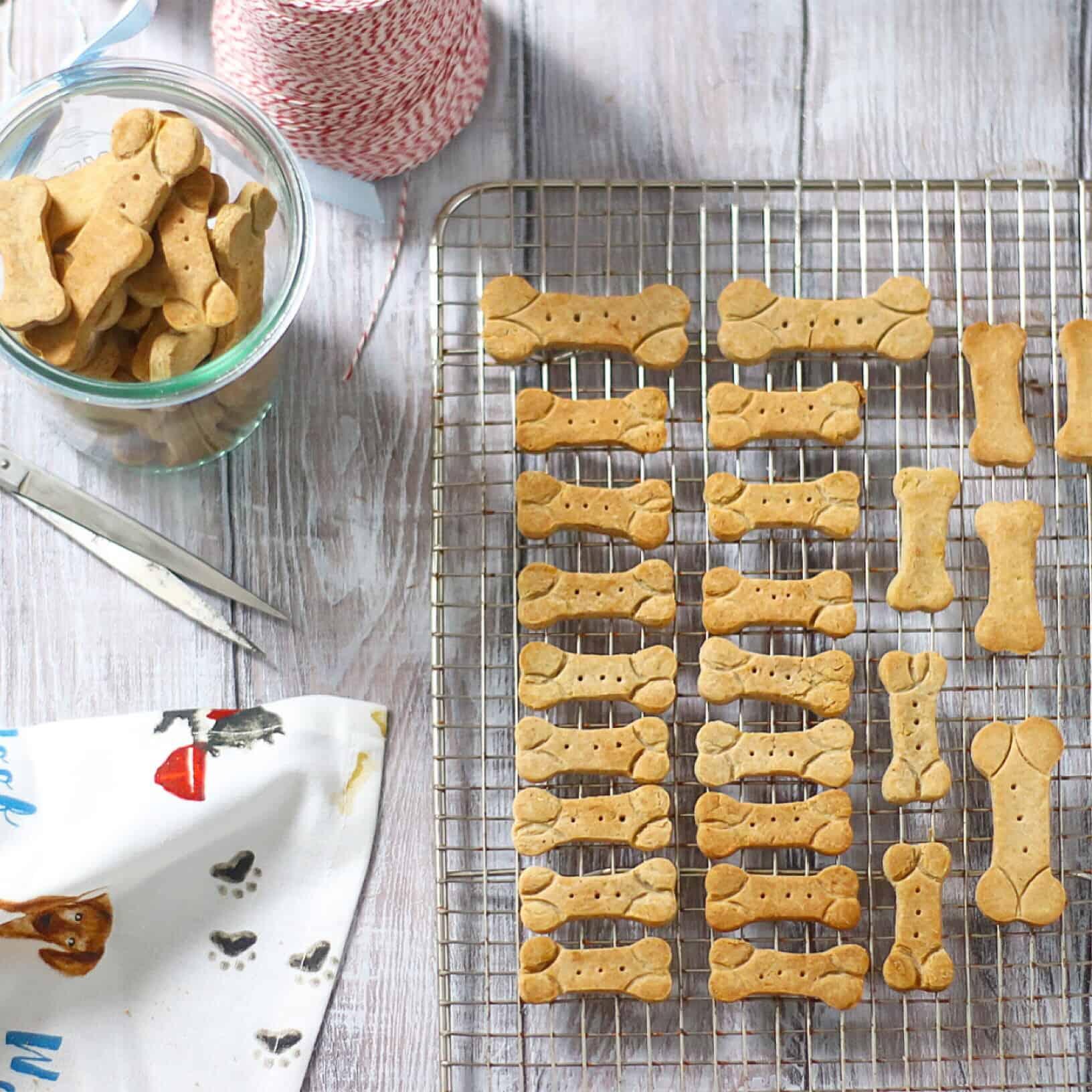 """""""Pumpkin Pie"""" Buckwheat Dog Biscuits"""