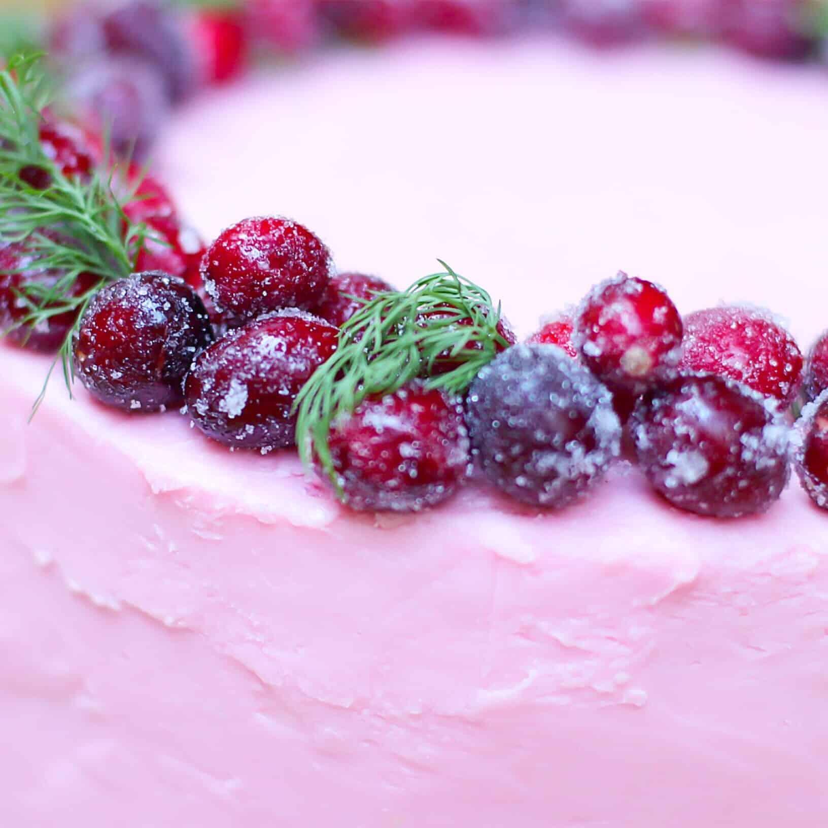 GF Choc Cran Cherry Cake closeup