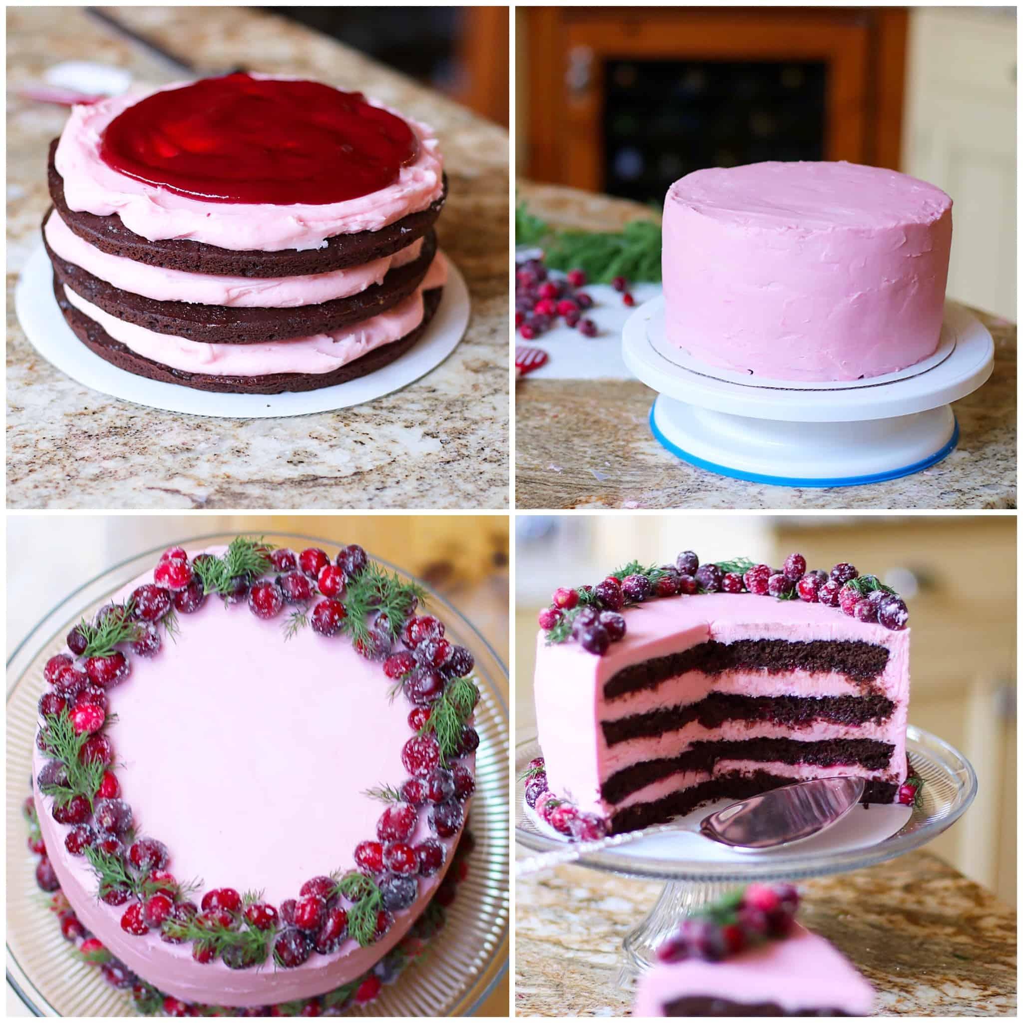 GF Choc Cran Cherry Cake wk 2