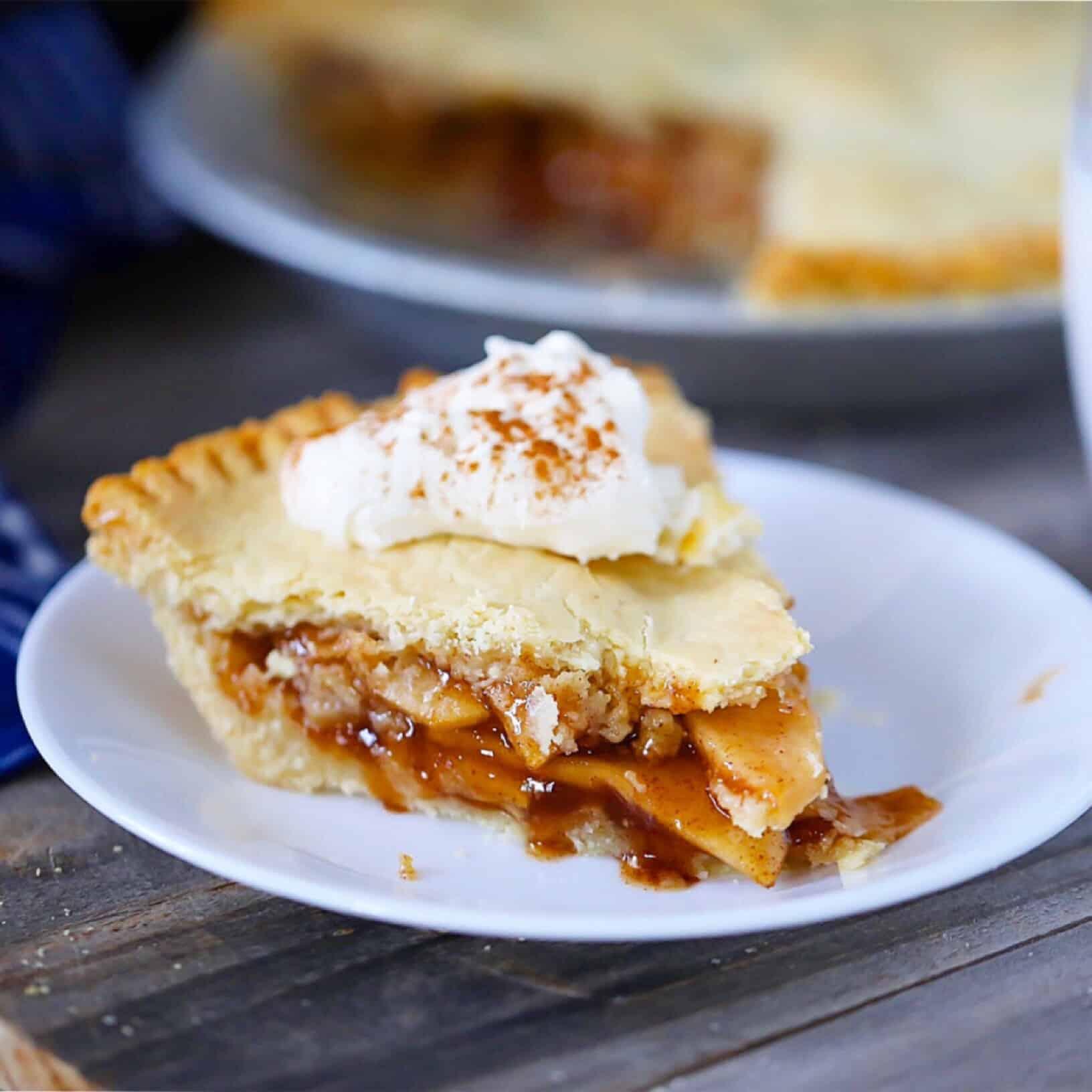 Paleo Thanksgiving Recipes (Vegan, SCD options)