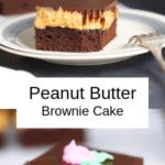 Keto Peanut Butter Brownie Cake Pin