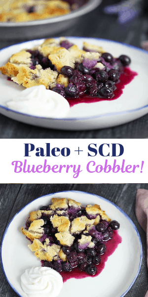 blueberry cobbler, paleo +scd