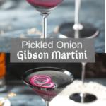 Gibson Martini Pin