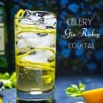 Celery Gin Rickey Pinterest Pin