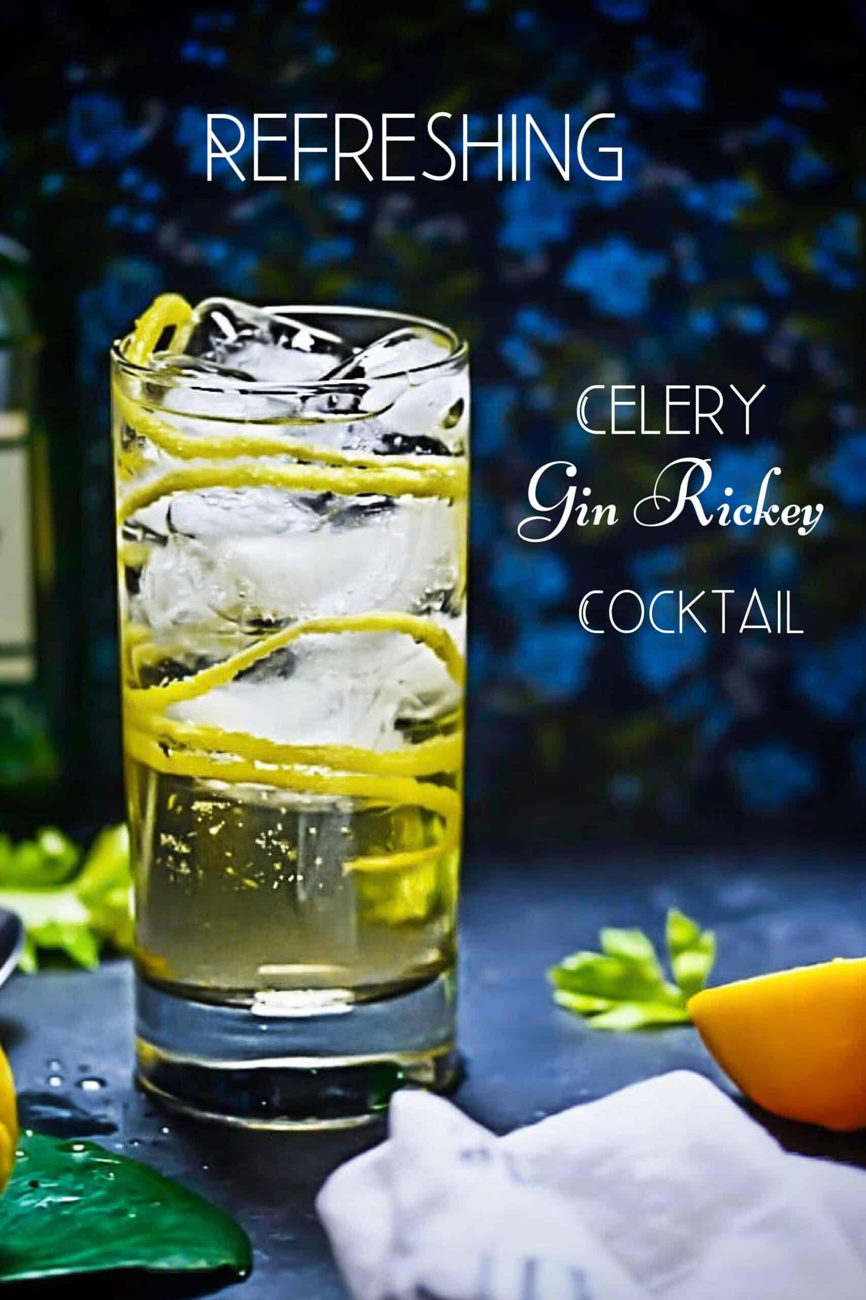 Gin Rickey Pinterest Pin