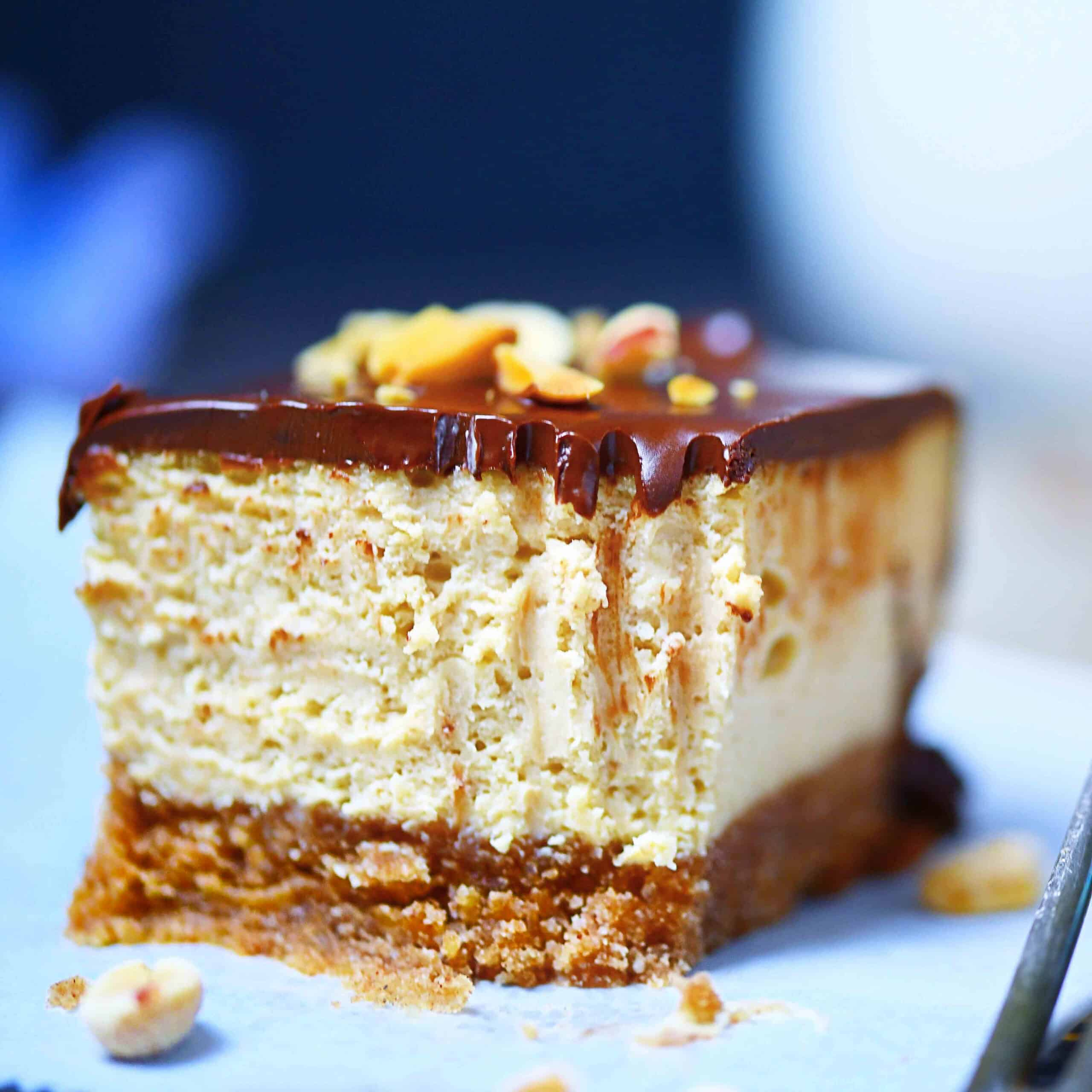 closeup photo of pb cheesecake with fork