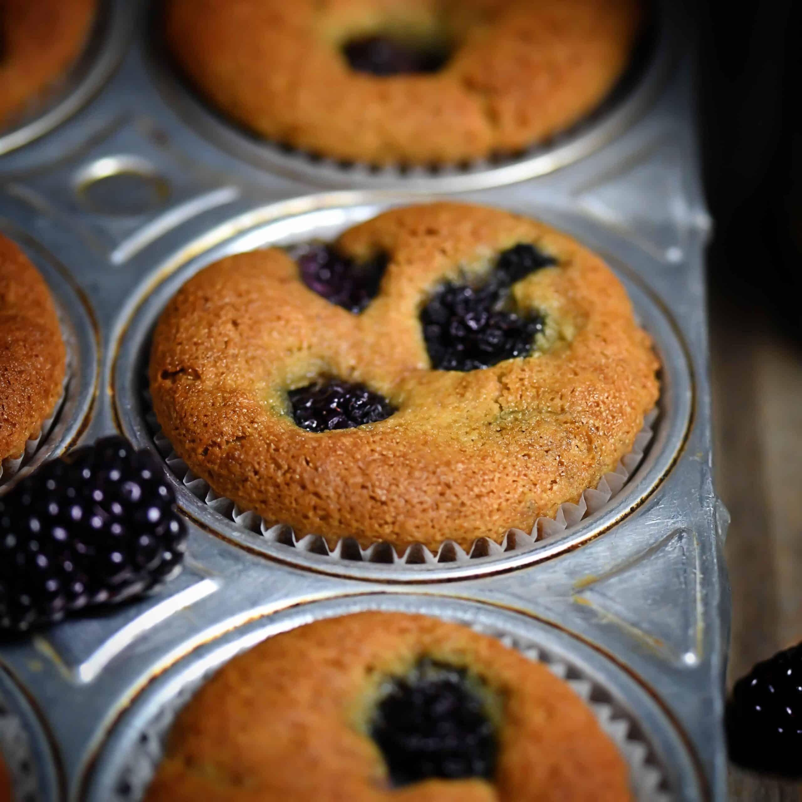 Grain-Free Blackberry Muffin Recipe