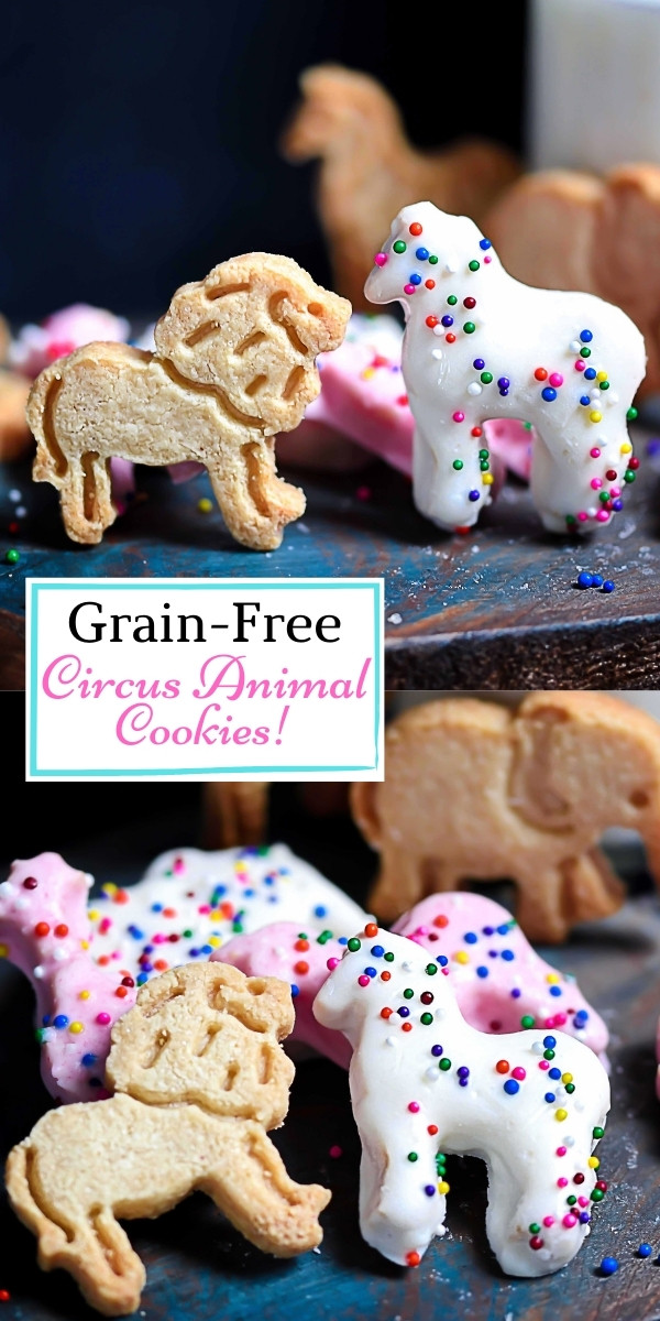 Grain-Free Animal Cookie Pin